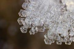 snowflake Imágenes de archivo libres de regalías
