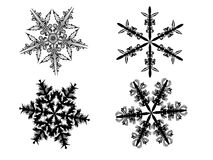 Snowflake. Black snowflake on transparent background Royalty Free Stock Photos