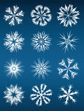 Snowflake. Vector set of 12 different snowflakes Stock Image