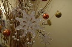 snowflake Fotografia de Stock