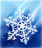 Snowflake_along Royalty Free Stock Photos