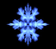 Snowflake on a black background Stock Photography