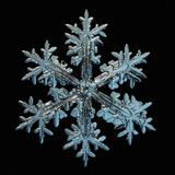 Snowflake  on black background Royalty Free Stock Images