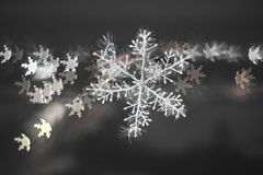Snowflake with blurred black and white background. royalty free stock photography