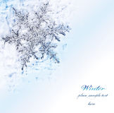 Snowflake blue decorative border Royalty Free Stock Images