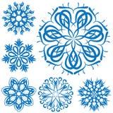 Snowflake blue flower on a white background. set Stock Image