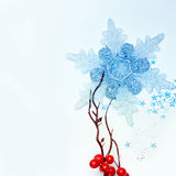 Snowflake and branch of berries Stock Photography