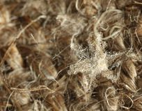 Snowflake burlap στοκ φωτογραφίες με δικαίωμα ελεύθερης χρήσης