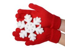 The snowflake Stock Images