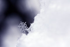 Snowflake. Close-up of a snowflake royalty free stock photography