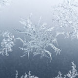 Snowflake close up on window glass in winter Royalty Free Stock Image
