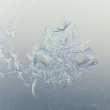 Snowflake close up on window glass at winter dawn Royalty Free Stock Photo