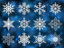 Snowflake collection Stock Photos