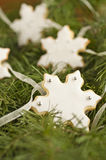 Snowflake cookies Stock Image
