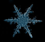 Snowflake crystal Royalty Free Stock Photos