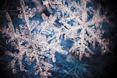 Snowflake crystal Royalty Free Stock Photo