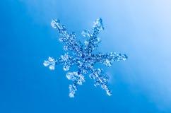 Snowflake crystal natural macro Royalty Free Stock Photography
