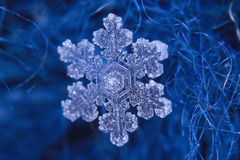 Snowflake crystal natural snow Royalty Free Stock Image