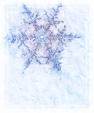 Snowflake decoration Stock Photography