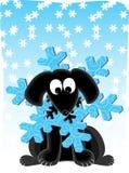 Snowflake Dog Royalty Free Stock Photography