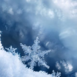 Snowflake Edge. Digital composite of snowflakes and frost Royalty Free Stock Photography
