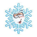 SnowFlake Emoticon - Hey You Stock Images