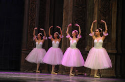 The snowflake Fairy- -The Ballet  Nutcracker Royalty Free Stock Images