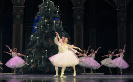 The snowflake Fairy- The second act second field candy Kingdom -The Ballet  Nutcracker Royalty Free Stock Images