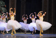 The snowflake Fairy- The second act second field candy Kingdom -The Ballet  Nutcracker Stock Images