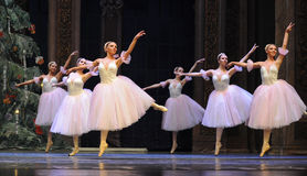 The snowflake Fairy- The second act second field candy Kingdom -The Ballet  Nutcracker Stock Photos