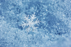 Snowflake Fairytale. Macro close up from a snowflake in natural surroundings royalty free stock image