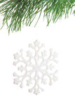 Snowflake on fir branch Royalty Free Stock Photography
