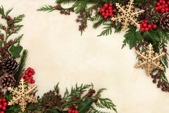 Snowflake and Floral Border Royalty Free Stock Images