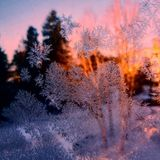 Snowflake. Frost winter sunrise window view Royalty Free Stock Photography