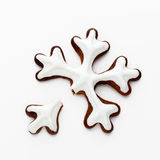 Snowflake gingerbread cookies Royalty Free Stock Photos
