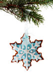 Snowflake gingerbread cookies Stock Image
