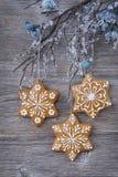 Snowflake Gingerbread Cookies Stock Image