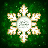 Snowflake on green background Royalty Free Stock Photo