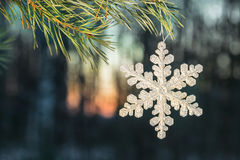 Snowflake hanging on tree in snowy woods Royalty Free Stock Photo