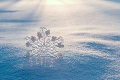 Snowflake i snowen Arkivbilder