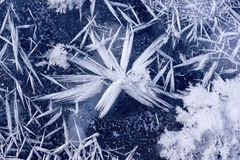 Snowflake on the ice. Stock Image