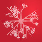 Snowflake illustration Stock Images