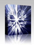 Snowflake Illustration Box Package Royalty Free Stock Photography