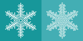 Snowflake. Stock Photos