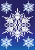 Snowflake lace pattern Stock Images