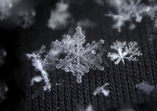 Snowflake large shiny star Royalty Free Stock Image