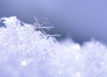 Snowflake  Macro. Snowflake is shown close up. Clearly visible, its shape and structure Stock Photography