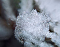 Snowflake macro icy structure. A Snowflake macro icy structure stock photo