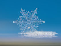 Snowflake Royalty Free Stock Image