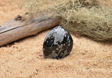 Snowflake obsidian on beach Royalty Free Stock Photography
